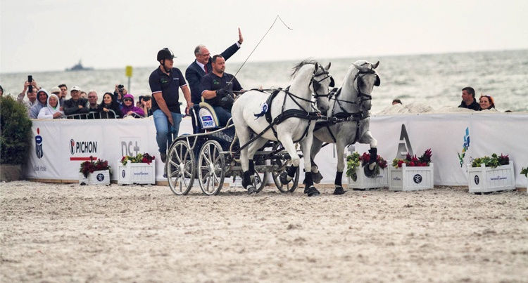Cavaliada Summer Jumping 2016: Driving Masters - wyniki Timeless Photography