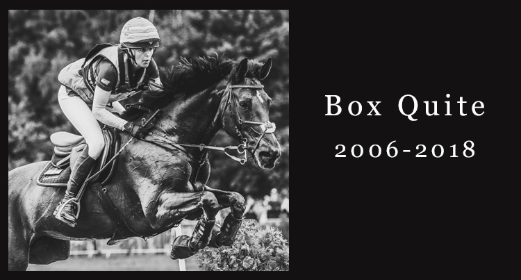 In memoriam: Box Quite