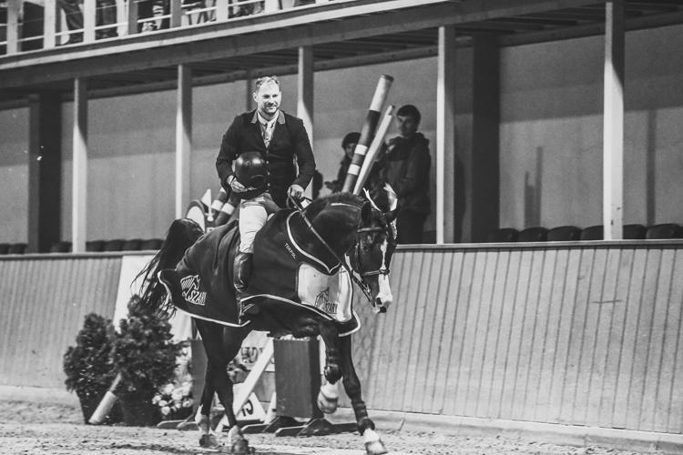 Cracovia Szary Equestrian Tour 2016 Marek Klus & Carison (Campbel x Graf)