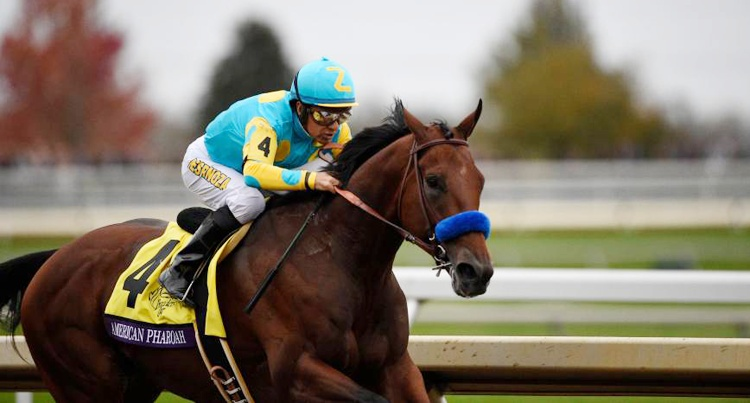 American Pharoah fot. Breeder's Cup LTD