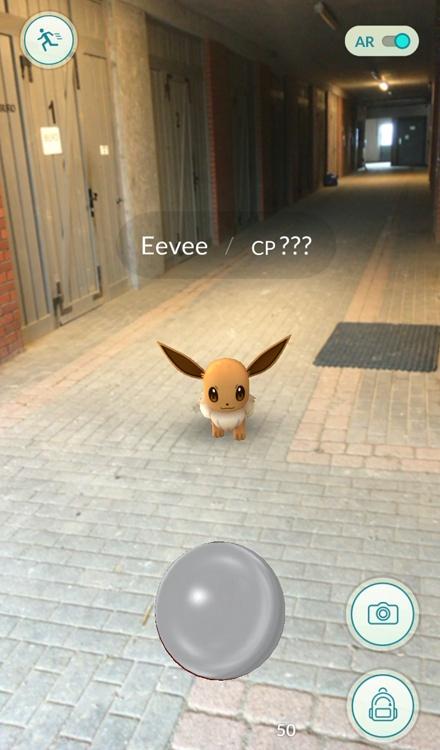 Pokémon GO, nowa gra, która opanowuje świat!, www.equista.pl, equestrian, pokemon, stable pokemon