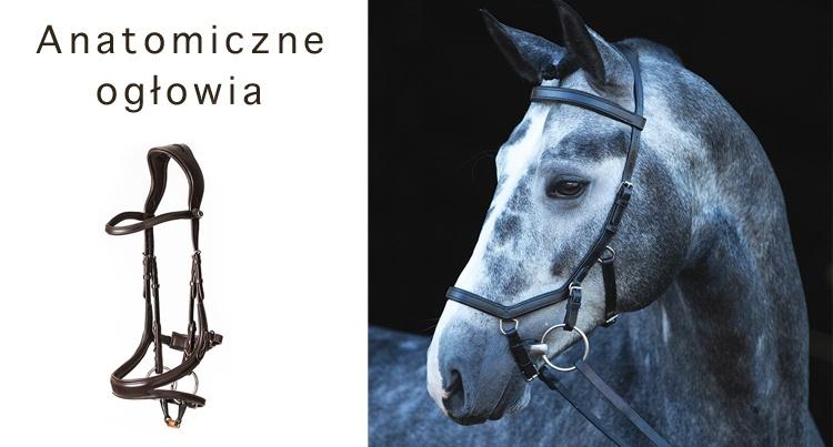 7a2bde2424e0b Equista - Akcesoria: Anatomiczne i nowoczesne ogłowia
