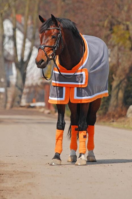 Dobre i polskie, equista.pl, Jarpol akcesoria dla koni i jeźdzców