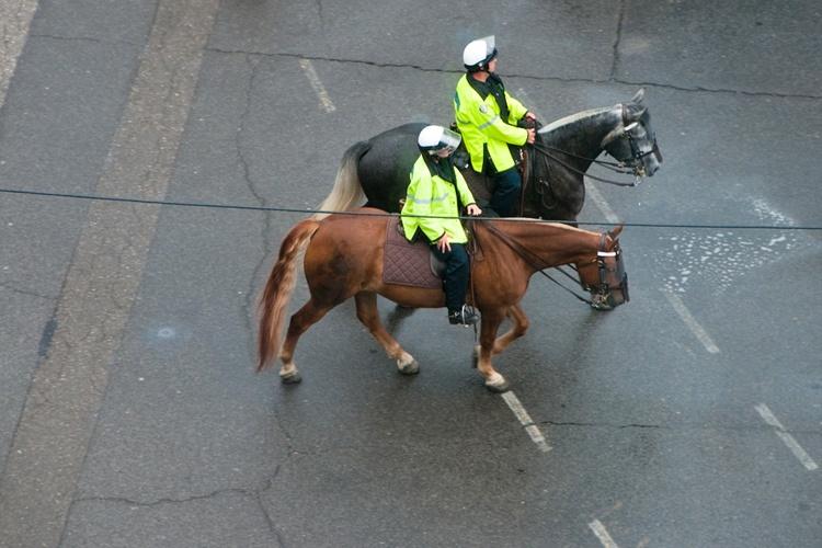 Koń i jeździec w ruchu drogowym , equista.pl, przepisy ruchu drogowego, odblaski, znaki drogowe, koń na drodze