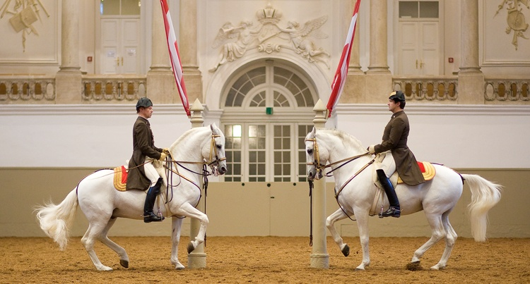 Spanish Riding School fot. Michael Rzepa