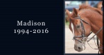 In memoriam: Madison