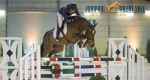 Jumping Talent Sale 28.01.2015, Amsterdam